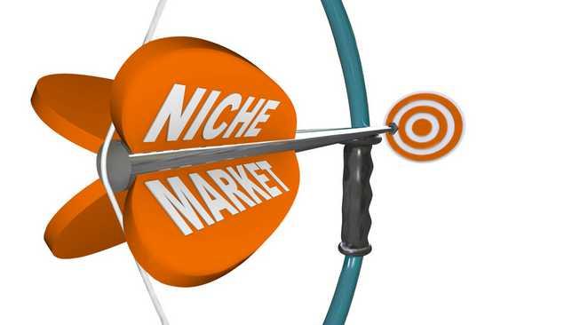 Niche-Market-là-gì